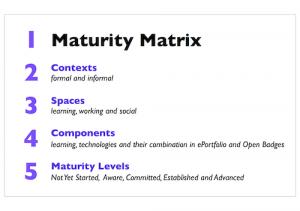 Maturity Matrix Overview